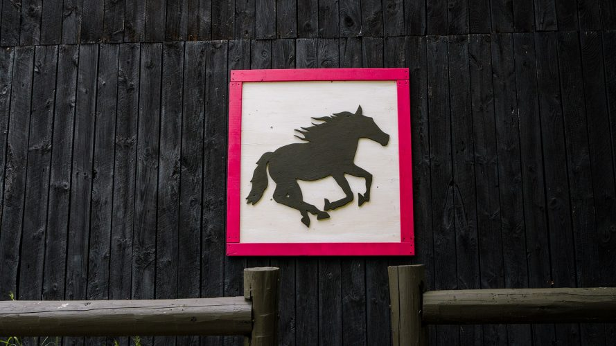 Wooden sign of ranch logo